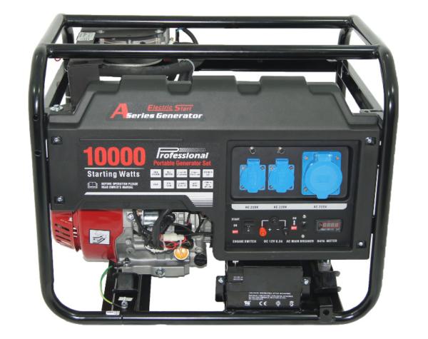 Газовый генратор REG LC10000 (3) с АВР