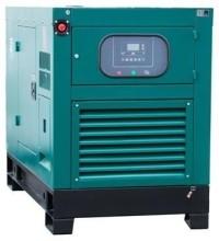 Газовый генератор REG G36-3-RE-LS в кожухе
