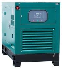 Газовый генератор REG G36-3-RE-LS в кожухе с АВР